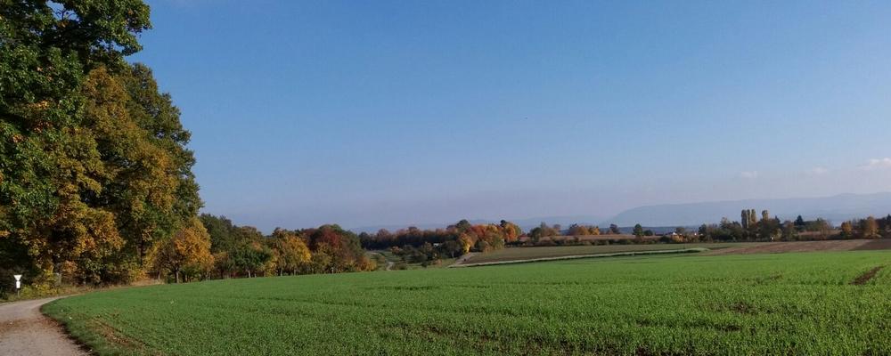 Hier wohne ich, im Hintergrund die Schwäbische Alb.